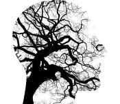 mental-health-2313430_640.jpg