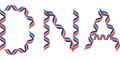 dna-2789759_640.png
